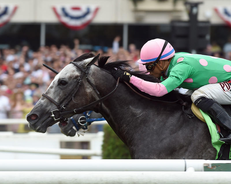 pure-sensation-credit-adam-coglianese