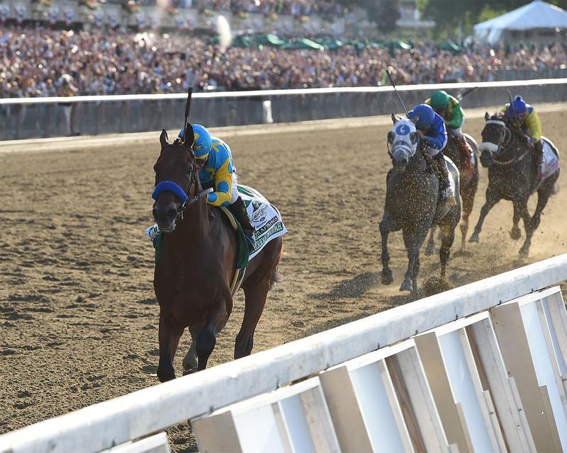 American Pharoah Belmont Stakes