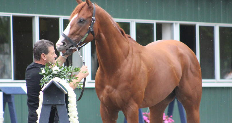 Justify 'just great' the day after Triple Crown victory in Belmont Stakes