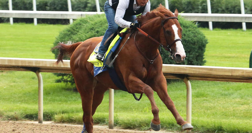 5e5fd658d2a489 It's Triple Crown hopeful Justify vs. nine in Grade 1, $1.5 million Belmont  Stakes presented by NYRA Bets
