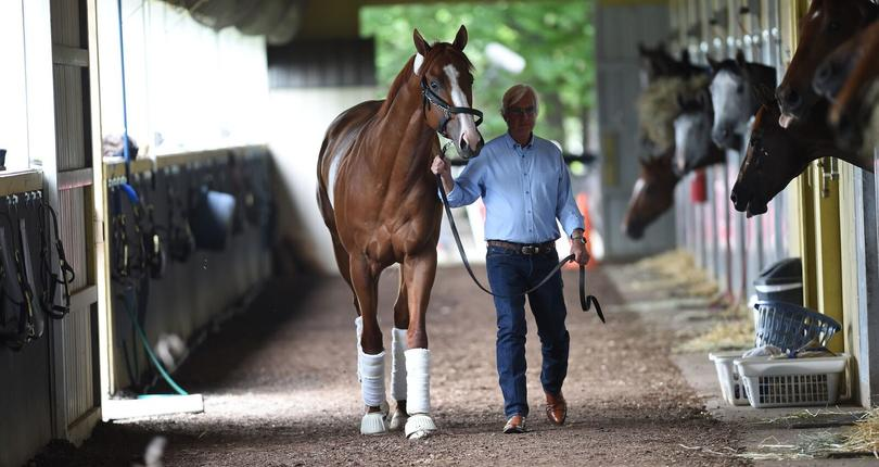 3e807b1e29c9 Triple Crown hopeful Justify arrives at Belmont Park for Saturday s 150th  Grade 1