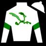 Roadrunner Racing, Boat Racing, LLC, Strauss Bros Racing and Gainesway Thoroughbreds, Ltd. silk