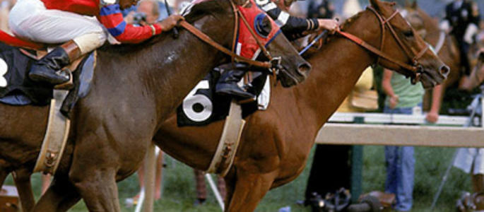 image of Affirmed