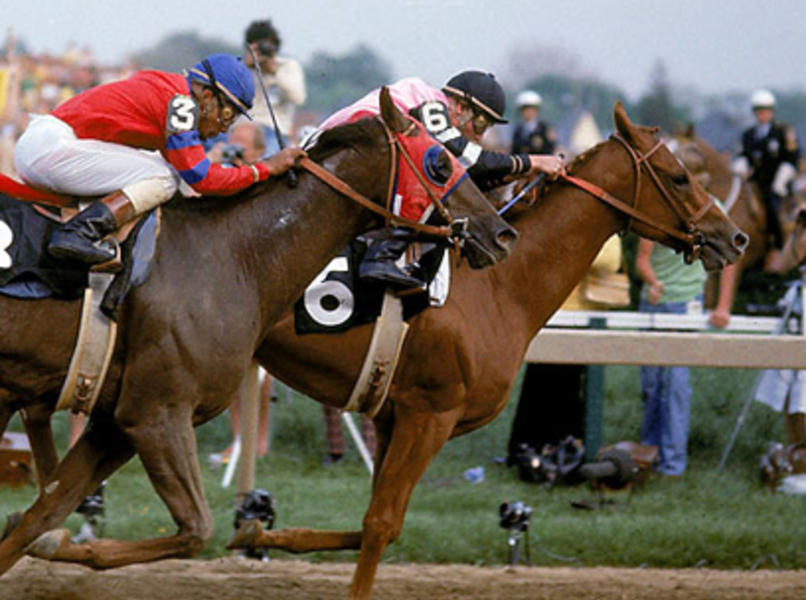 Photo of Affirmed