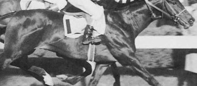 image of War Admiral