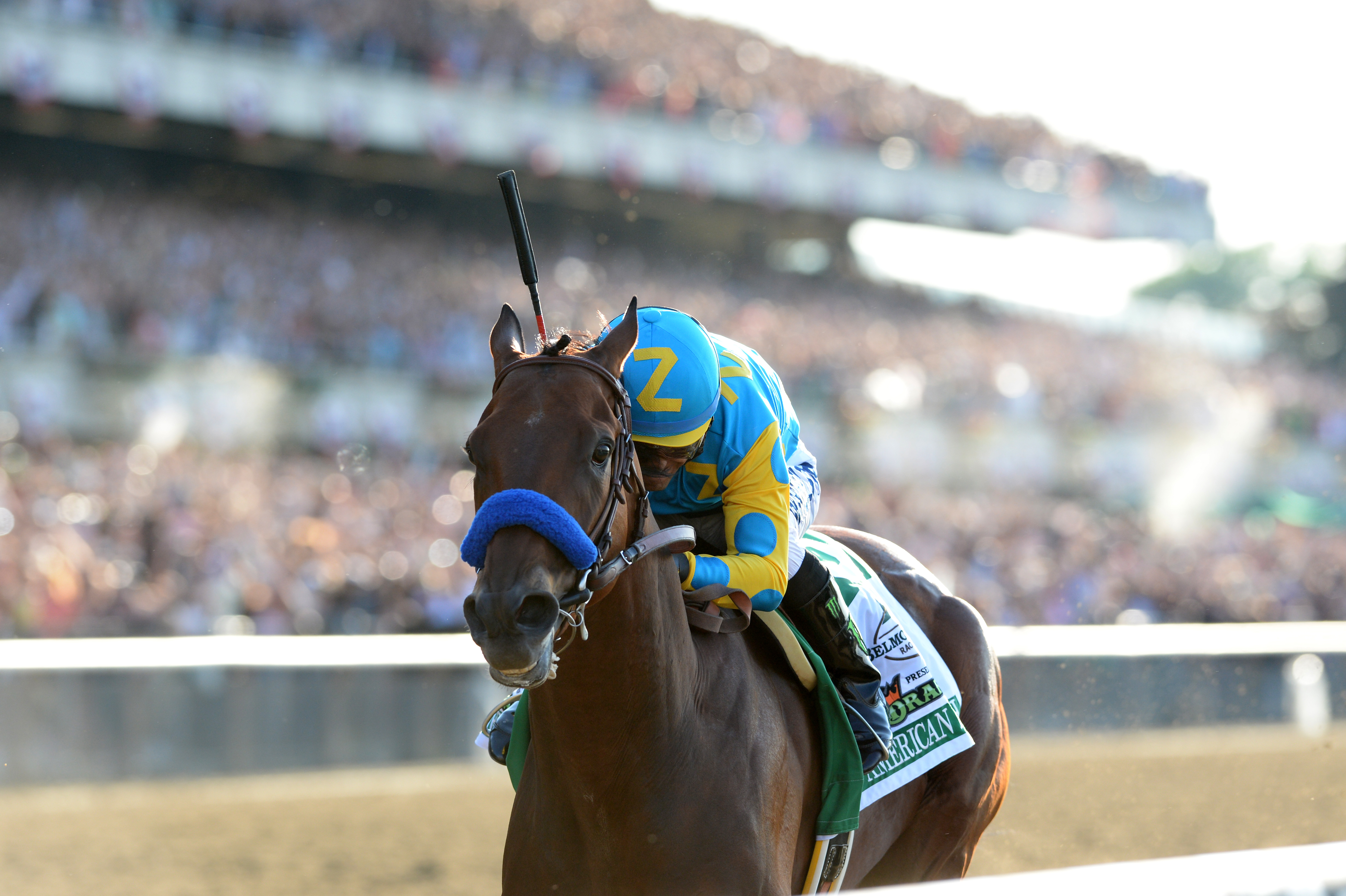 Past winners belmont stakes past winners falaconquin